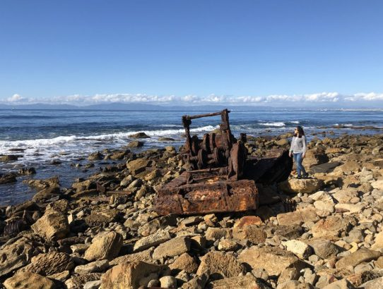 PALOS VERDES SHIPWRECK HIKE: ALL YOU NEED TO KNOW