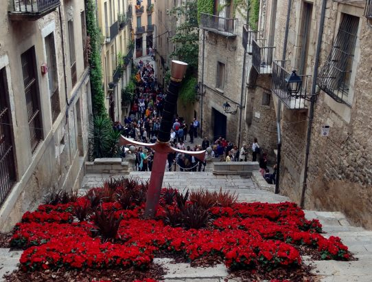 GIRONA: EXPLORING THE SPRING FLOWER FESTIVAL, TEMPS DE FLORS