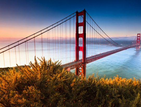Top 8 Attractions Of The San Francisco Bay Area
